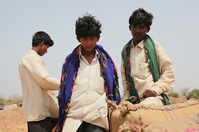 Boys packing grain india