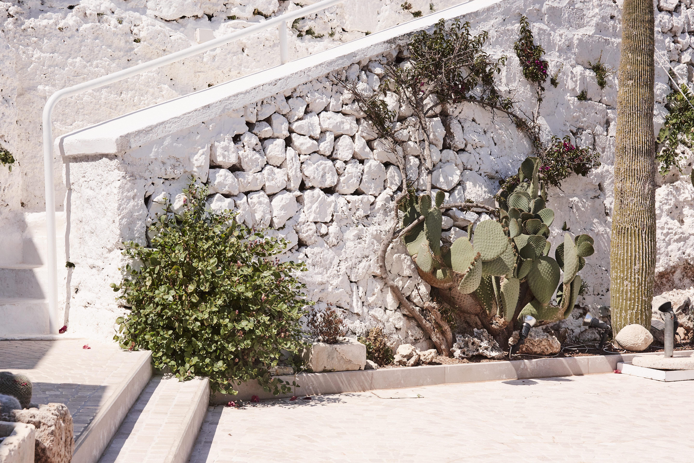 Puglia_0619_0P4A2348